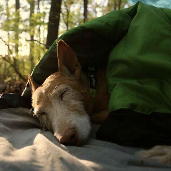 Makuupussi koirille - Retkelle.com